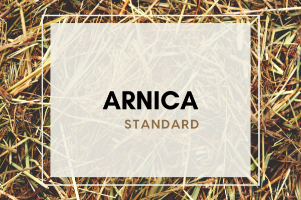 Arnica (4 guests)