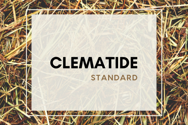 Clematide (4 guests)
