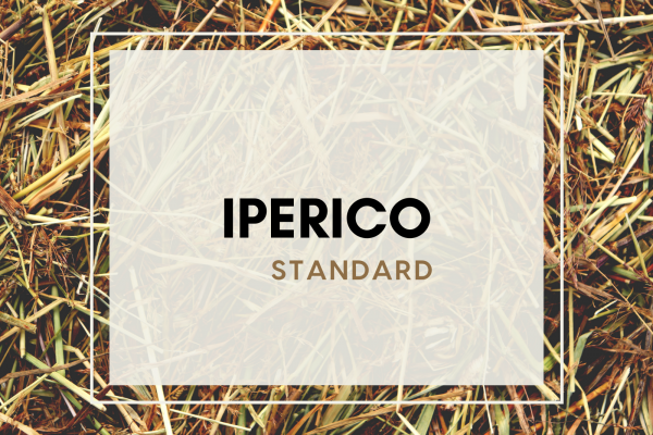 Iperico (4 guests)